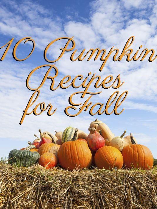 10 pumpkin recipes for fall