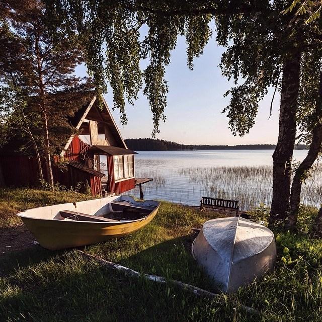 Summer in Sweden   wisslaren