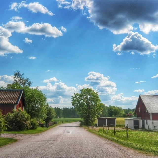 Swedish countryside in instagram photos by skimbaco http://instagram.com/skimbaco