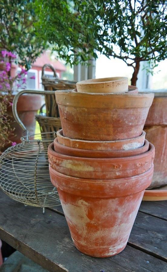 Gardening, flower pots | Photo: Katja Presnal @skimbaco