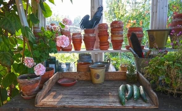 Greenhouse and gardening table in Swedish countryside | Photo: Katja Presnal @skimbaco