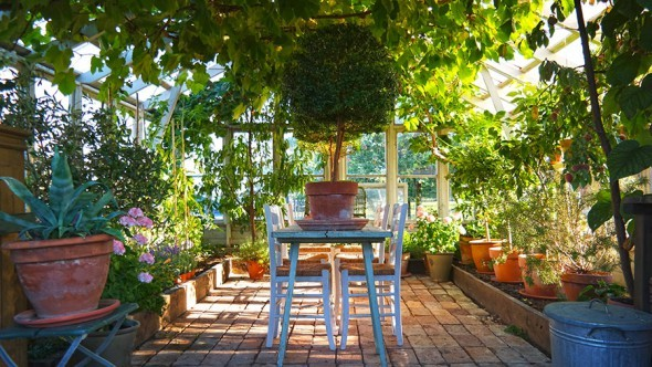 greenhouse-with-table-inside