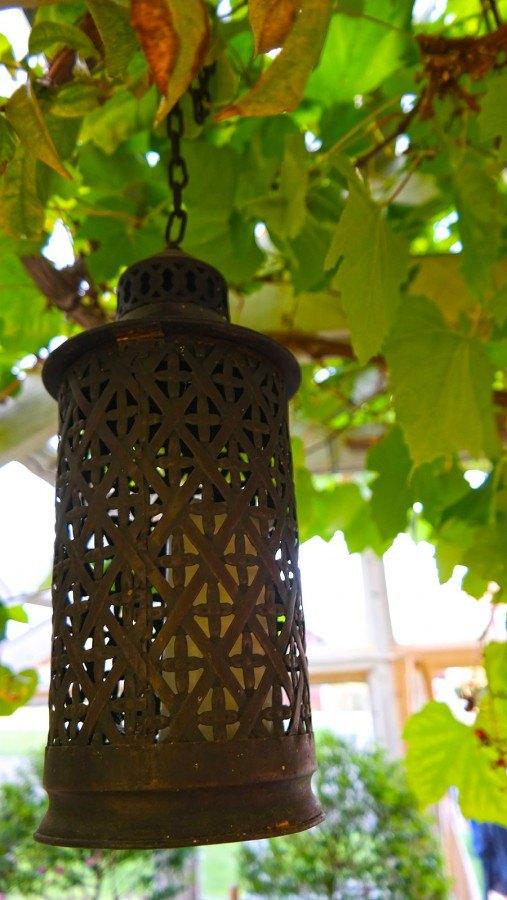 Lantern hanging in a greenhouse | Photo: Katja Presnal @skimbaco