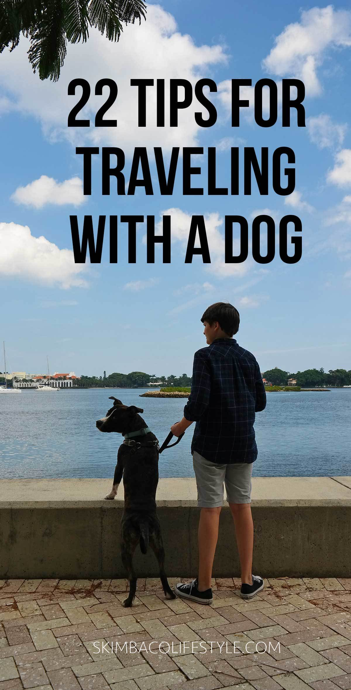 The Ultimate pet travel guide! 22 tips for traveling with a dog! Via travel experts at @skimbaco