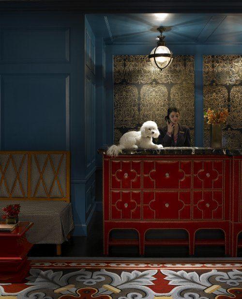 Kimpton hotels Directors of Pet Relations