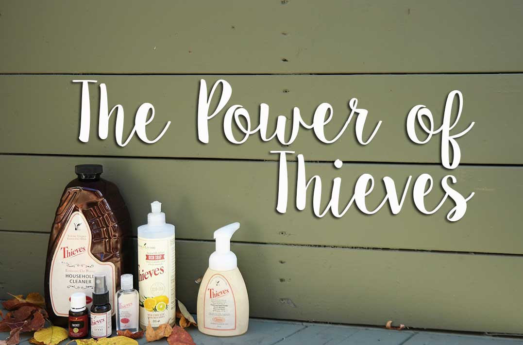 the-power-of-thieves-essential-oil-blend